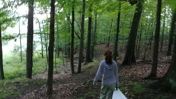 1 walking in woods