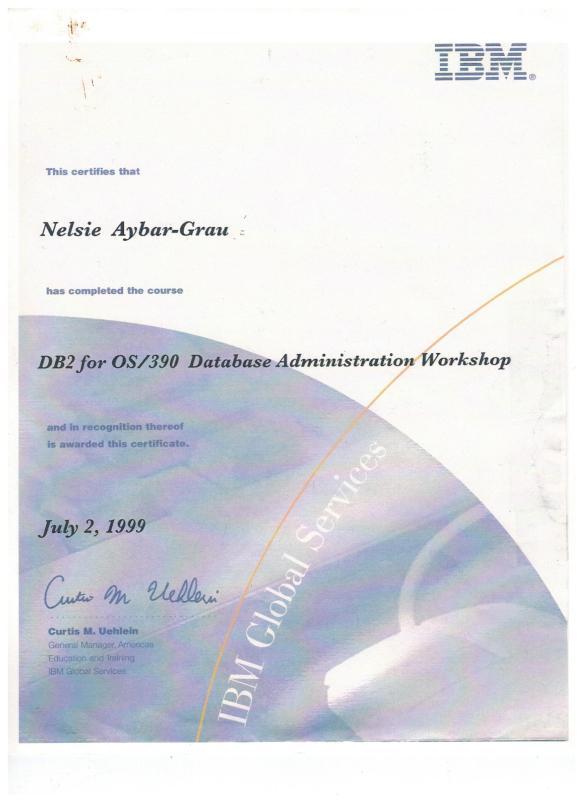 Nelsie 1999 IBM DB2 OS 390 Admin